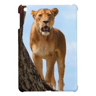 Lioness iPad Mini Covers