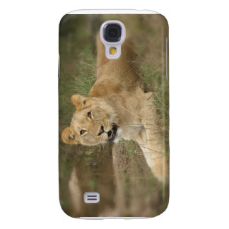 Lioness iPhone 3G Case Samsung Galaxy S4 Cover