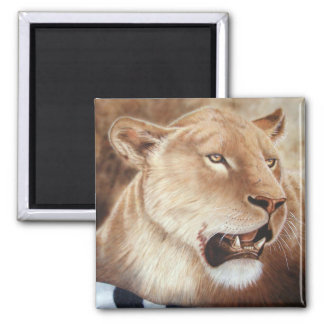 Lioness on her Kill 2 Inch Square Magnet
