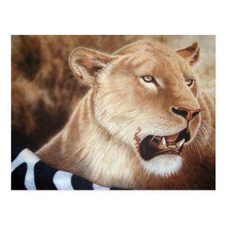 Lioness on her Kill Postcard