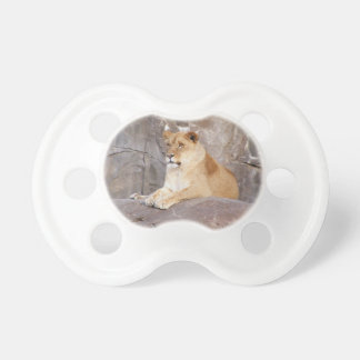 Lioness on the Rocks Pacifier