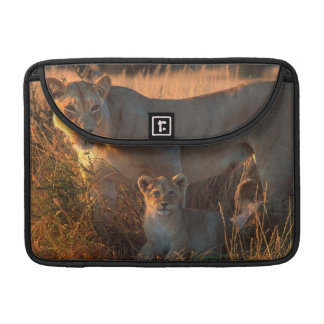 Lioness (Panthera Leo) And Cub Sleeve For MacBook Pro