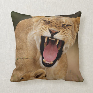 Lioness (Panthera Leo) Growling With Cub Pillow