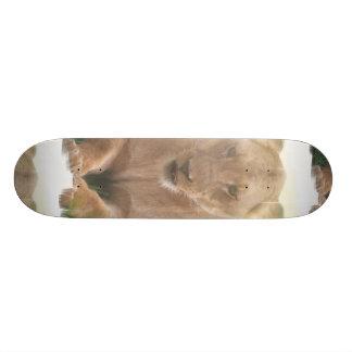Lioness Profile Skateboard