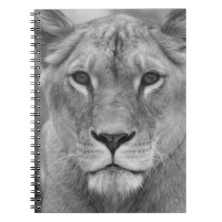 Lioness Queen (queen of hundred animals - female l Notebook