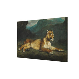 Lioness reclining, c.1855 (oil on panel) canvas print