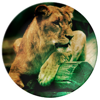 Lioness resting on a tree trunk porcelain plate