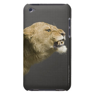 Lioness roaring 2 barely there iPod cover