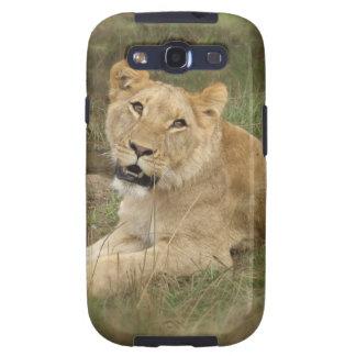 Lioness  Samsung Galaxy Case Samsung Galaxy S3 Case