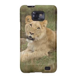 Lioness  Samsung Galaxy Case Samsung Galaxy SII Cover