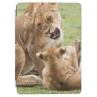 Lioness Snarls at Cub iPad Air Cover