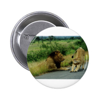 Lioness Stretch Pinback Button