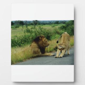 Lioness Stretch Plaque