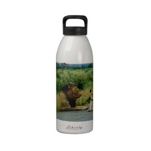 Lioness Stretch Reusable Water Bottles