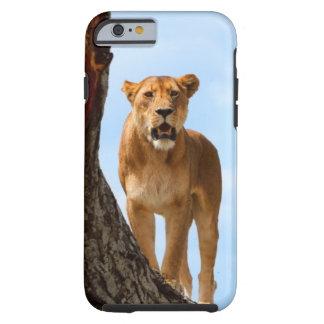 Lioness Tough iPhone 6 Case