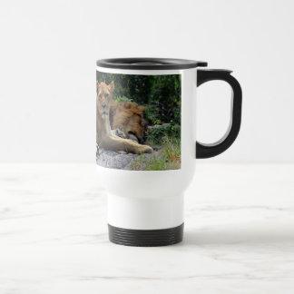Lioness with Sleeping Lion Photo Coffee Mugs