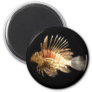 Lionfish 2 Inch Round Magnet