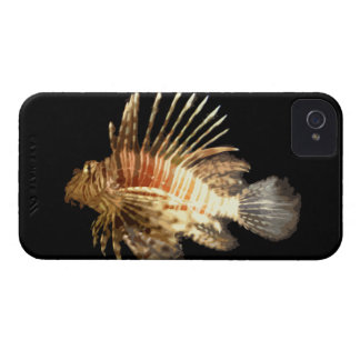 Lionfish against a Dark Background iPhone 4 Cases