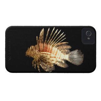 Lionfish against a Dark Background Case-Mate iPhone 4 Cases