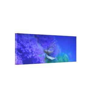 Lionfish Aquarium Fish Purple Pterois Zebrafish Canvas Print
