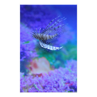 Lionfish Aquarium Fish Purple Pterois Zebrafish Stationery