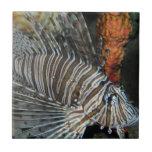Lionfish Azulejo Cerámica