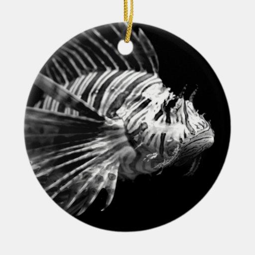 Lionfish blanco y negro hermoso adorno para reyes