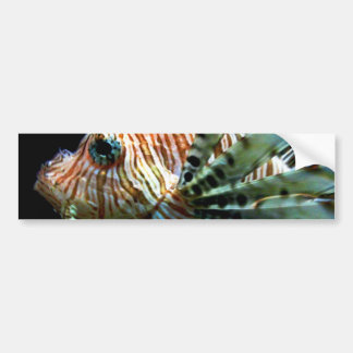 Lionfish Bumper Sticker
