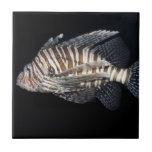 Lionfish Ceramic Tiles