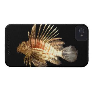 Lionfish contra un fondo oscuro iPhone 4 Case-Mate coberturas