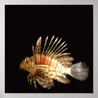 Lionfish en la oscuridad póster