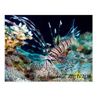 Lionfish en la postal de la gran barrera de coral