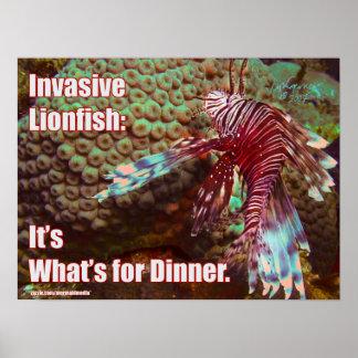 Lionfish: Es cuál está para la cena Impresiones