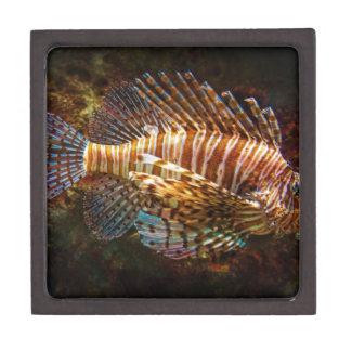 Lionfish Gift Box