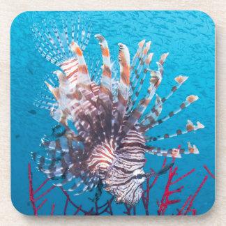 Lionfish Hard Plastic Coasters (set of 6)