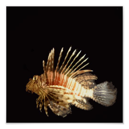 Lionfish in the dark poster