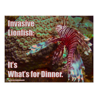 Lionfish: It's What's for Dinner Poster