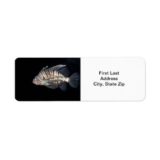 Lionfish Label