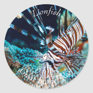 Lionfish on the Great Barrier Reef Classic Round Sticker