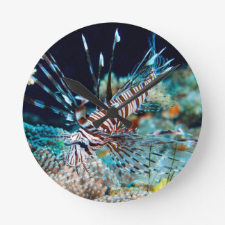 Lionfish on the Great Barrier Reef Wall Clock