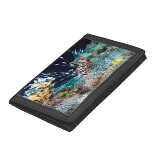 Lionfish on the Great Barrier Reef Trifold Wallet