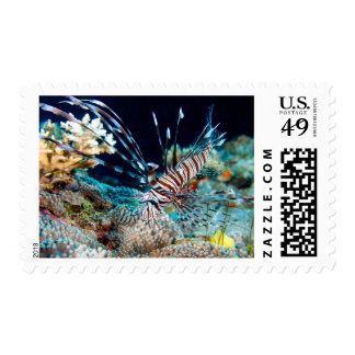 Lionfish Postage Stamps