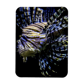 Lionfish Rectangular Magnet