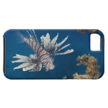 Lionfish (Pterois volitans) swimming over iPhone 5 Covers