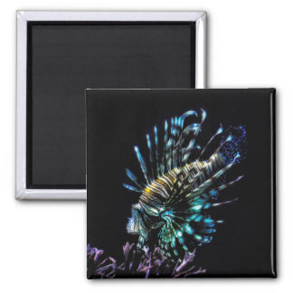 Lionfish swims magnet