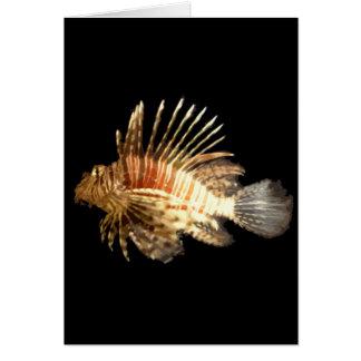 Lionfish Tarjetón