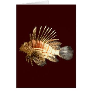 Lionfish Tarjeton