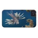 Lionfish (volitans del Pterois) que nada encima iPhone 4 Cárcasas