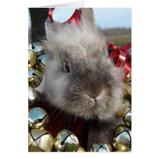 Lionhead Bunny Christmas Card