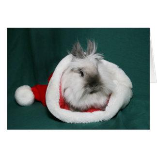 Lionhead Bunny Santa Card